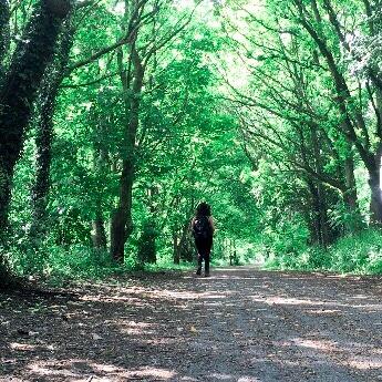 Hadrian's Wall Path, Wylam Waggonway